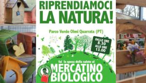 parco verde olmi quarrata il mercatino del biologico