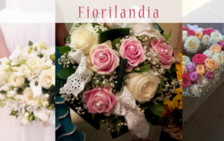 Dove acquistare Fiori e piante a Quarrata?