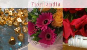 fiori e piante quarrata